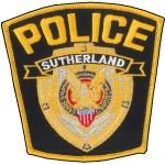 Police badge02